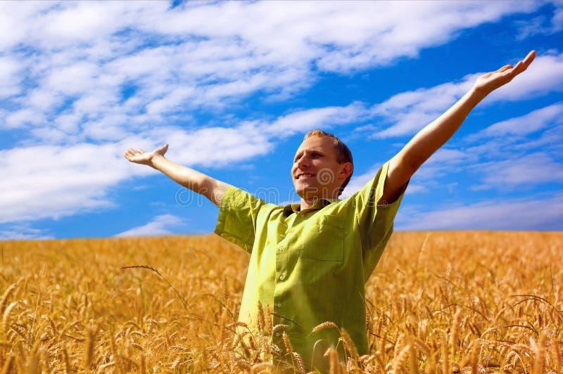 Leute auf dem Weizengebiet lizenzfreies stockfoto