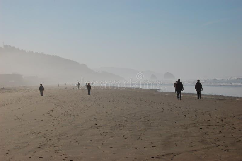 Leute auf nebelhaftem Ozeanstrand lizenzfreie stockfotos
