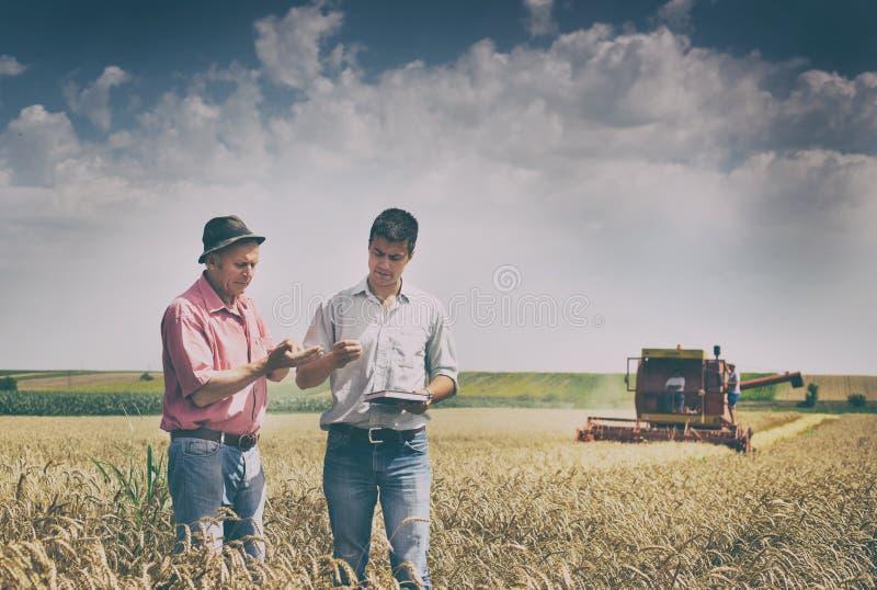 Leute an der Ernte stockfoto