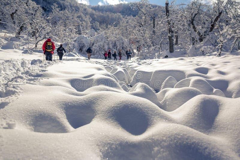 Leute, die auf Schnee auf sehr kalter Landschaft gehen stockbilder