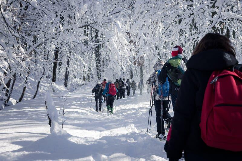 Leute, die auf Schnee auf sehr kalter Landschaft gehen stockfotos