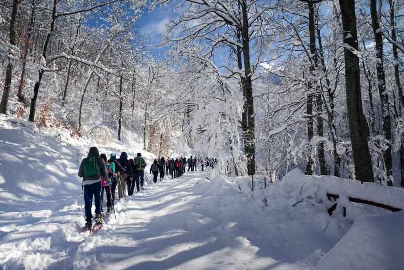Leute, die auf Schnee auf sehr kalter Landschaft gehen lizenzfreie stockfotos