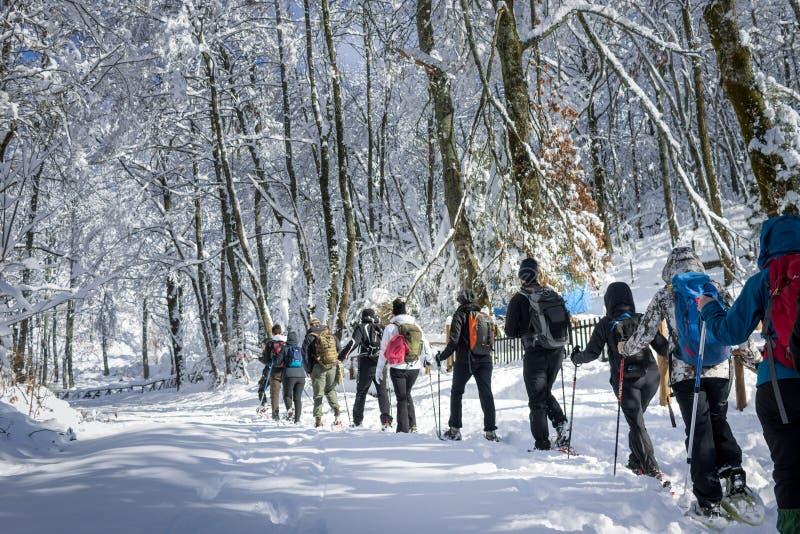 Leute, die auf Schnee auf sehr kalter Landschaft gehen lizenzfreies stockfoto