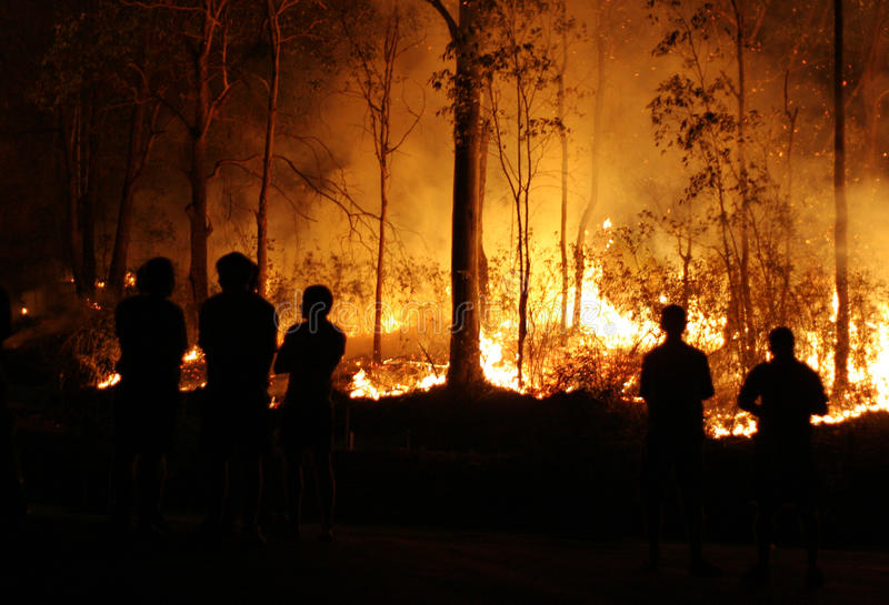 Leute, die Bushfire überwachen lizenzfreie stockbilder