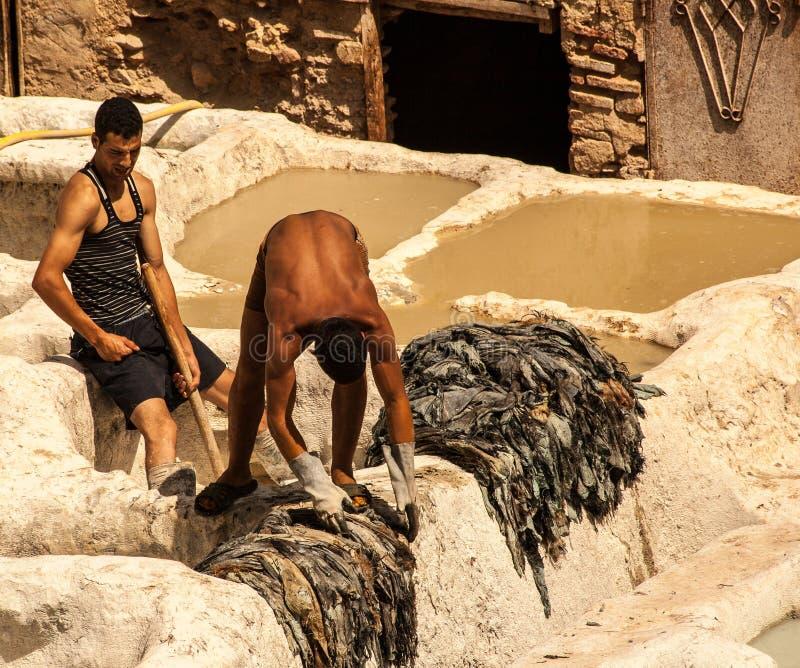 Leute, die in der berühmten Gerberei, Marokko arbeiten lizenzfreie stockfotos