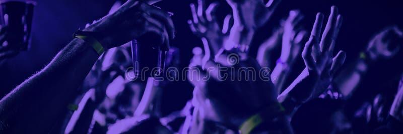 Leute, die an einem Konzert tanzen lizenzfreie stockfotografie