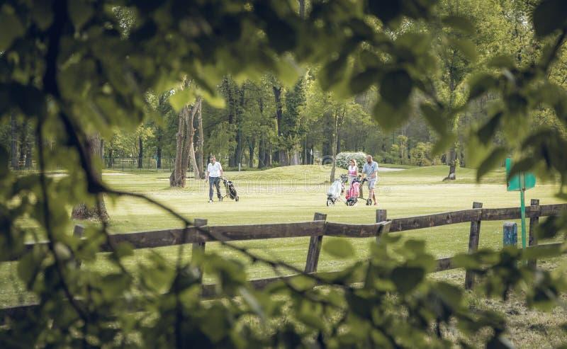 Leute, die Golf spielen lizenzfreie stockfotografie
