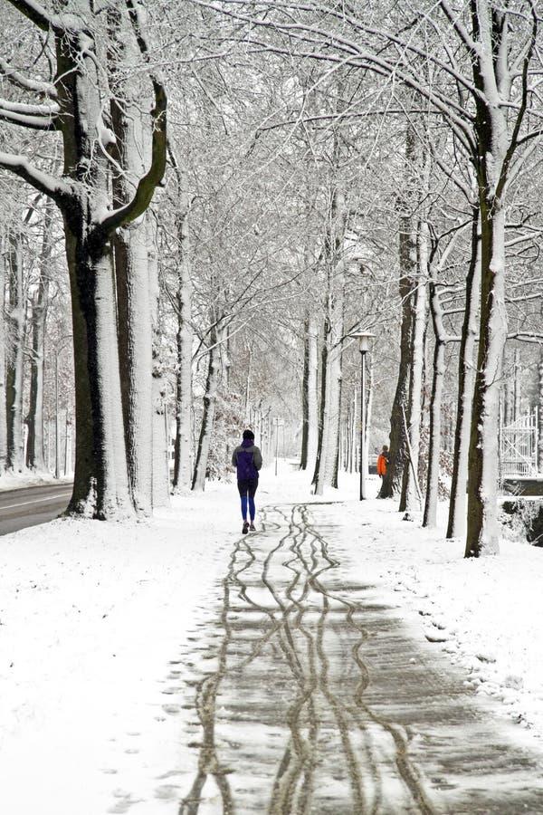 Leute, die im Winter im Wald rütteln lizenzfreies stockbild
