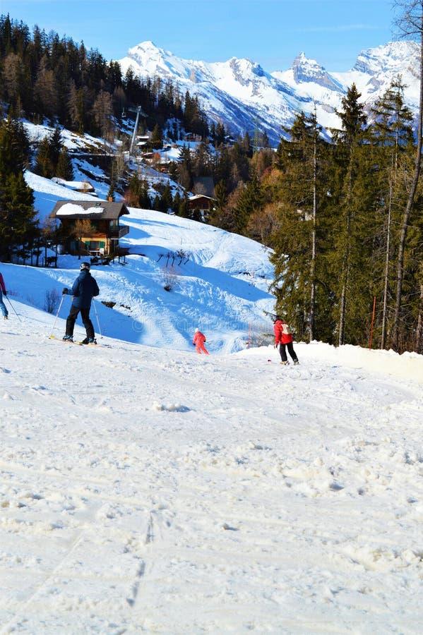 Leute, die Spaß, die Schweiz, Schweizer Alpen Ski fahren und haben stockfoto