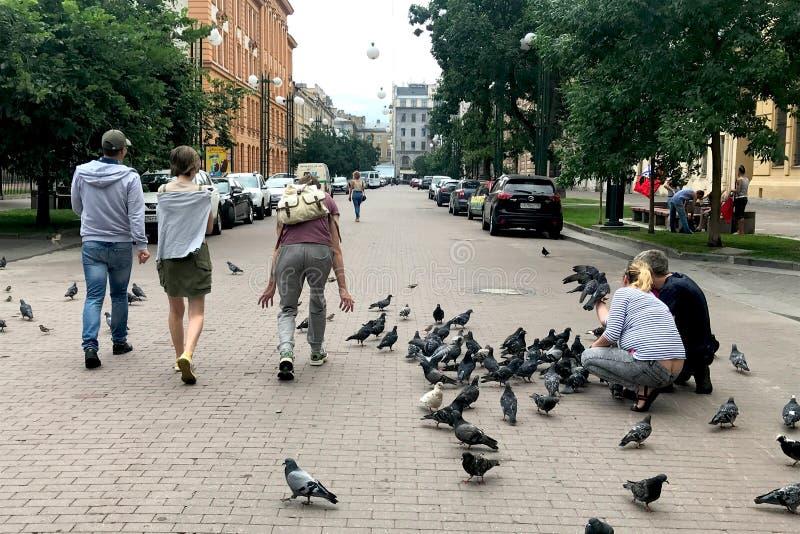 Leute gehen entlang die Fußgängerstraße im Stadtzentrum, ziehen eine Menge von Tauben ein und spielen mit ihnen stockfotos