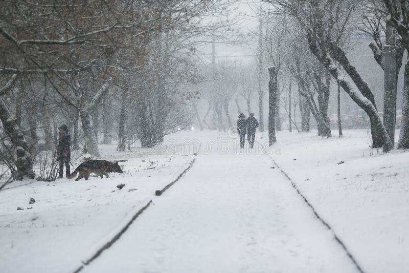 Leute gehen entlang die Wege in den Schneef?llen lizenzfreie stockbilder
