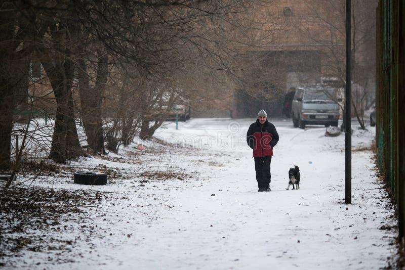 Leute gehen entlang die Wege in den Schneef?llen stockfotografie