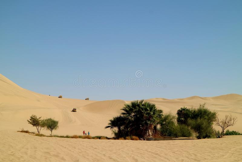 Leute genießen die Tätigkeiten um die kleine Oase auf den unermesslichen Sanddünen von Huacachina-Wüste, Ica-Region, Peru lizenzfreie stockfotos