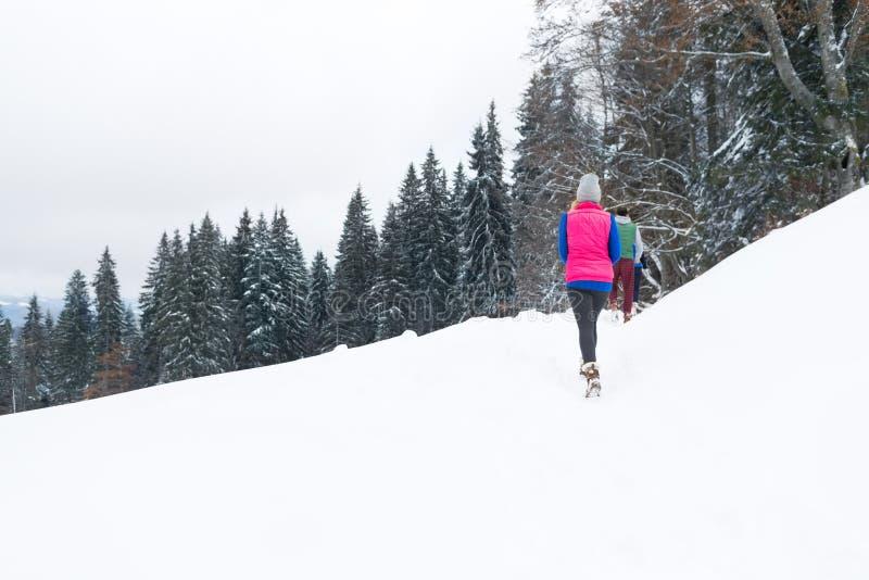 Leute gruppieren gehenden Winter-Schnee-Gebirgswald, junges Freund-Weihnachtsfeiertags-Ferien-Holz stockfoto