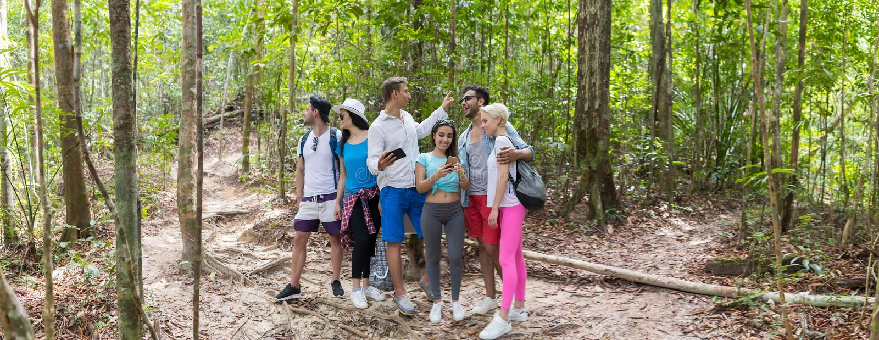 Leute gruppieren mit Rucksack-Trekking auf Forest Path Using Cell Smart-Telefon-Karte, jungen Männern und Frau auf Wanderung stockfotos