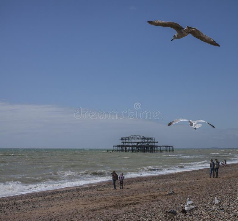 Leute, Seemöwen, blaue Himmel und der alte Pier lizenzfreies stockfoto