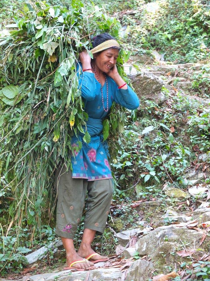 Leute von Nepal lizenzfreie stockbilder
