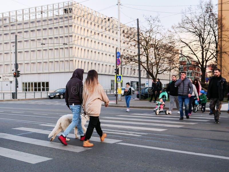 Leute, welche die Straße am Zebrastreifen kreuzen lizenzfreies stockbild