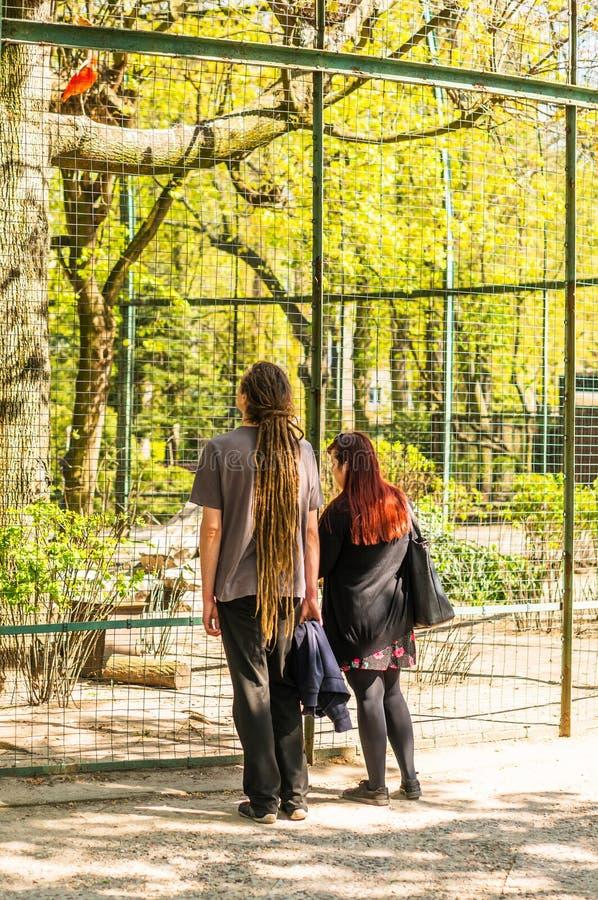 Leute am Zoo lizenzfreies stockfoto