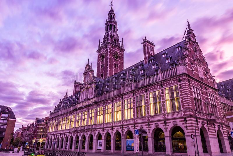 Leuven Library, Sunrise royaltyfria foton