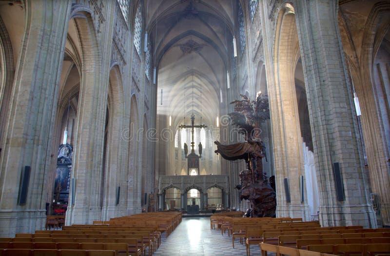 Leuven - skepp av St Peters den gotiska domkyrkan och strålar av morgonsolen arkivfoton