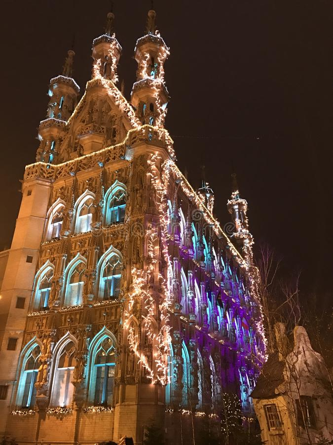 Leuven urząd miasta zdjęcia stock