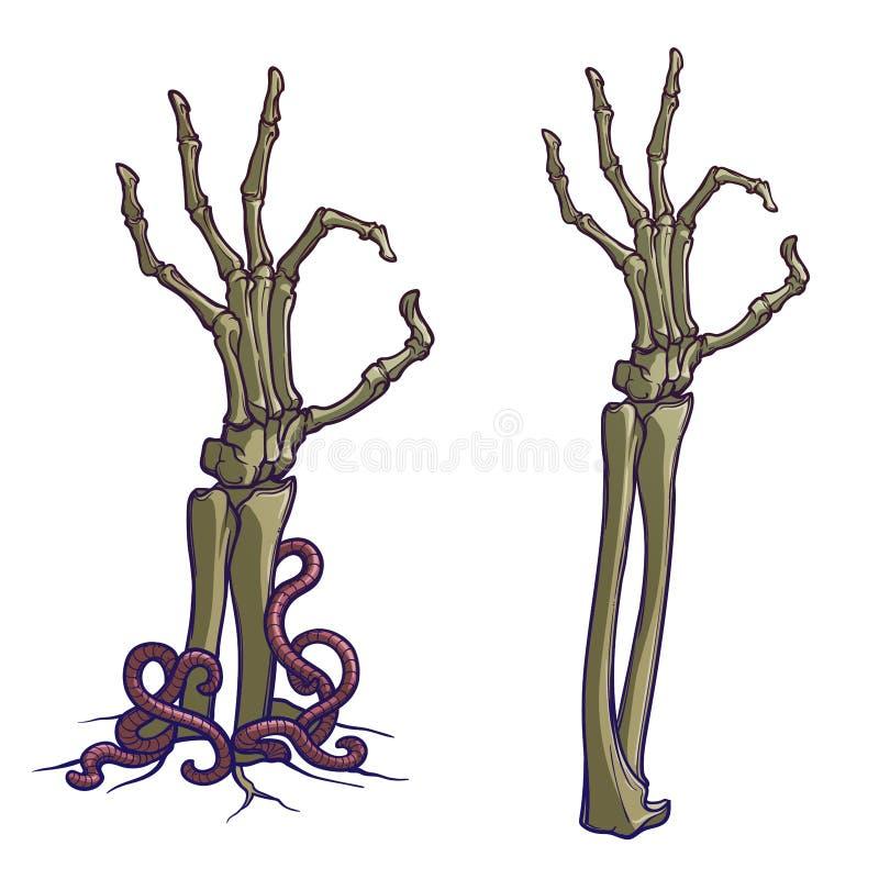 Levande dödkroppsspråk hand isolerad ok teckenwhitekvinna Paret av skelettet räcker resning från jordningen och upprivet linjär m royaltyfri illustrationer