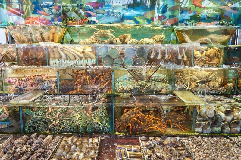 Levande skaldjur utanför en restaurang i Sai Kung, Hong Kong royaltyfria foton