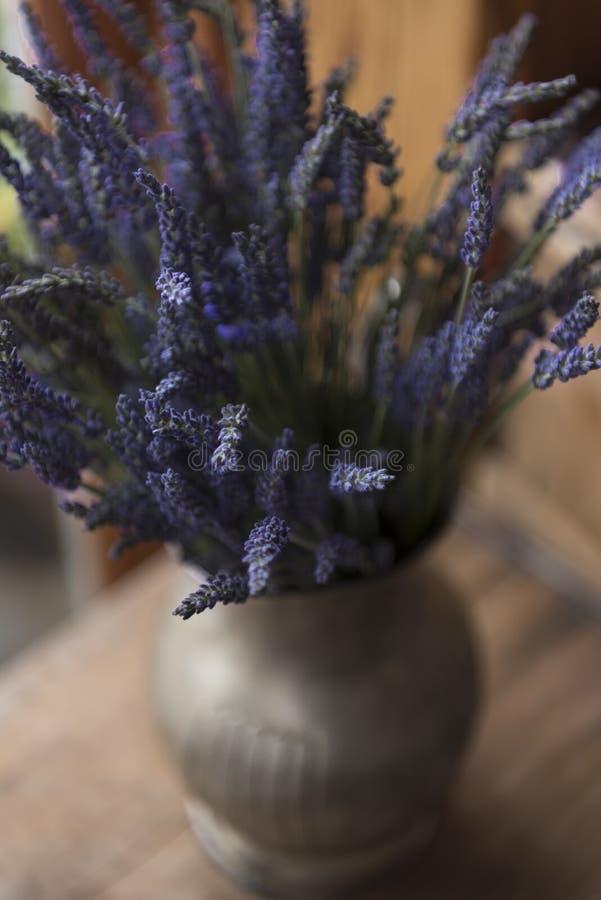 Levander kwiat w rocznika metalu wazie zdjęcie stock