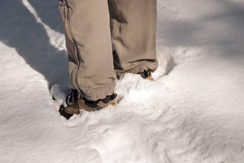 Download Levandosi In Piedi Nella Neve Immagine Stock - Immagine di attivo, esplori: 7315965
