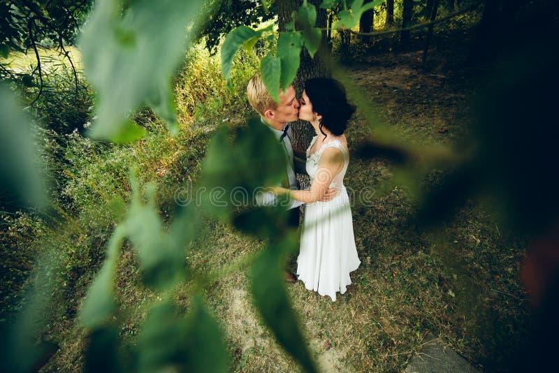 Download Levantamento Bonito Dos Pares Do Casamento Imagem de Stock - Imagem de elegance, verde: 65577049