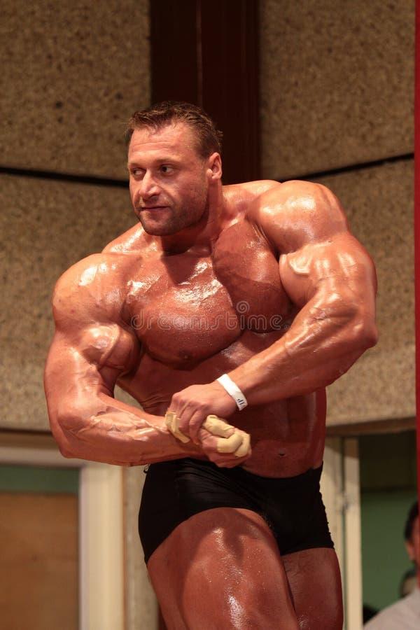 Levantamento do Bodybuilder imagem de stock royalty free