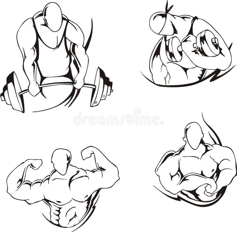 Levantamiento de pesas y el bodybuilding ilustración del vector