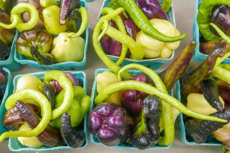 Levendige kartons van gemengde, kleurrijke peper royalty-vrije stock foto
