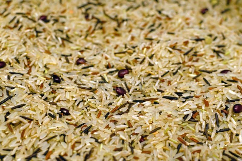 Levensmiddelenachtergrond met vier gemengde variëteiten Thaise rijst: bruine rijst, gemengde wilde rijst, witte basmati-rijst, ro royalty-vrije stock foto