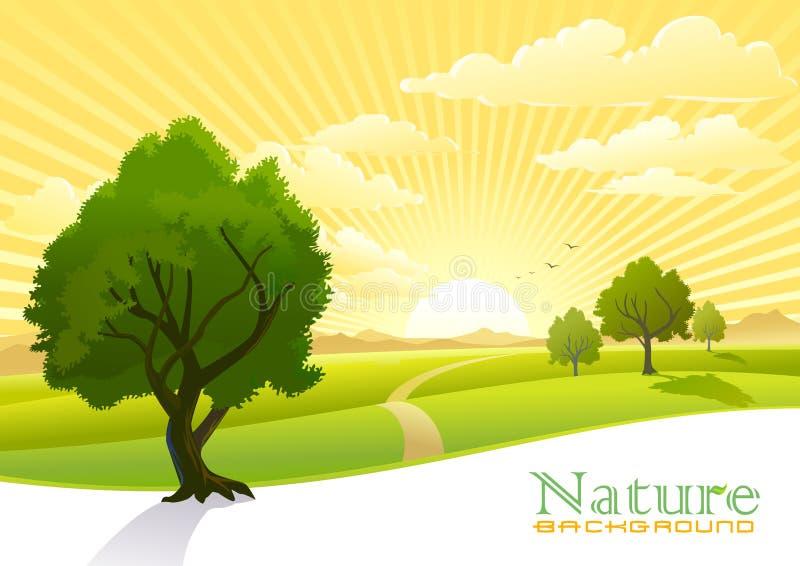 Lever de soleil à la campagne illustration de vecteur