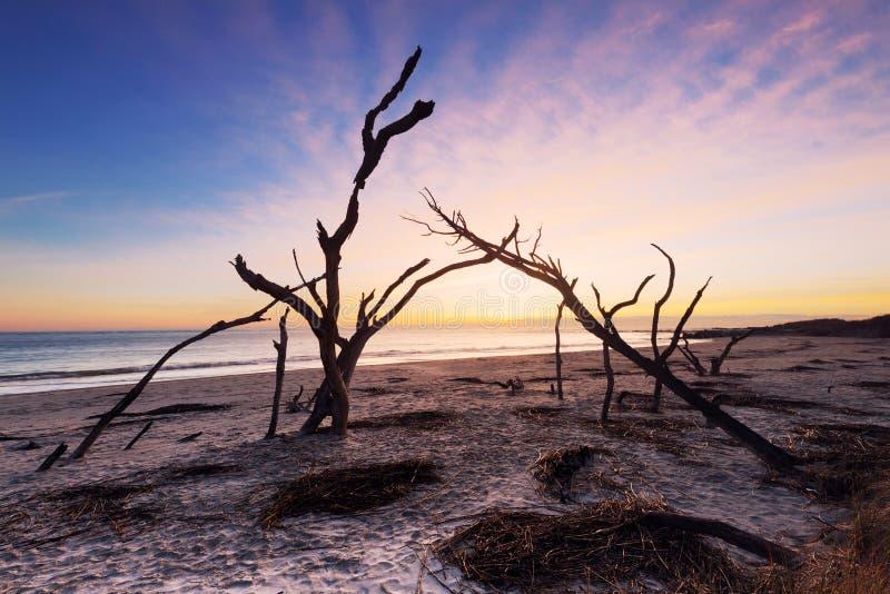 Lever de soleil à la plage de folie photos stock