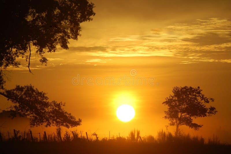 Lever de soleil étonnant image stock