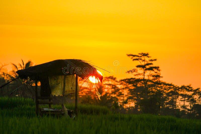 Download Lever de soleil image stock. Image du sunset, ouvert - 87708395