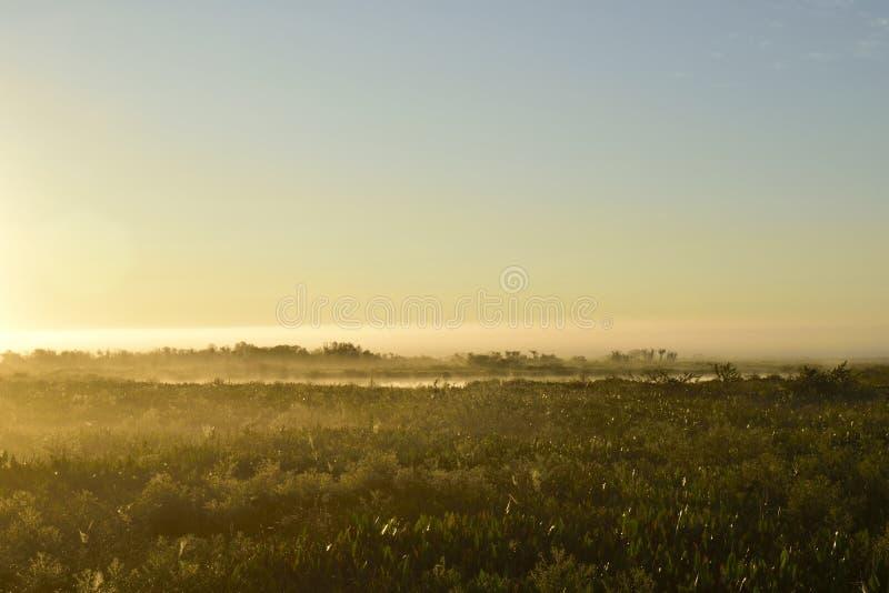 Download Lever De Soleil Au-dessus D'un étang Photo stock - Image du ciel, sunrise: 77156040