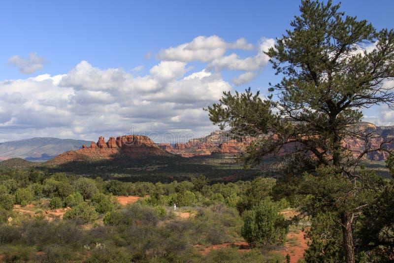 Lever de soleil au-dessus de formation de butte de crête, Sedona, Arizona photographie stock libre de droits
