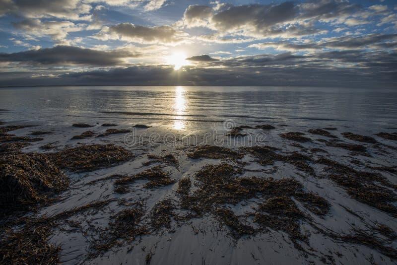 Lever de soleil au-dessus des banques d'algue de l'île de kangourou, Australie du sud photographie stock