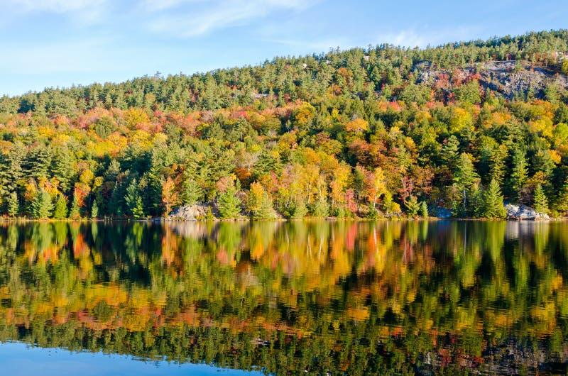 Lever de soleil au-dessus de lac de forêt  photo stock