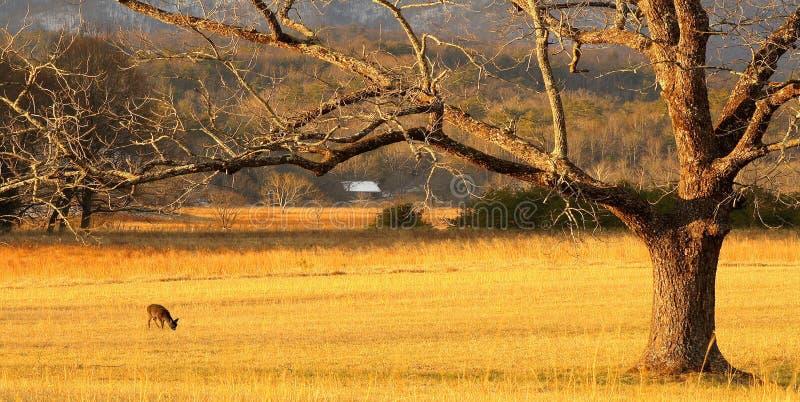 Lever de soleil au panorama de Cades image libre de droits