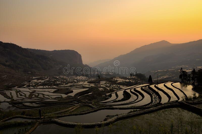 Lever de soleil aux terrasses de riz dans Yuanyang, Yunnan, Chine photos libres de droits