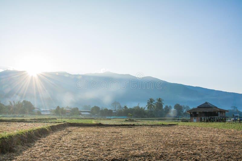 Lever de soleil avec le gisement vert de riz dans Pua, Thaïlande photographie stock