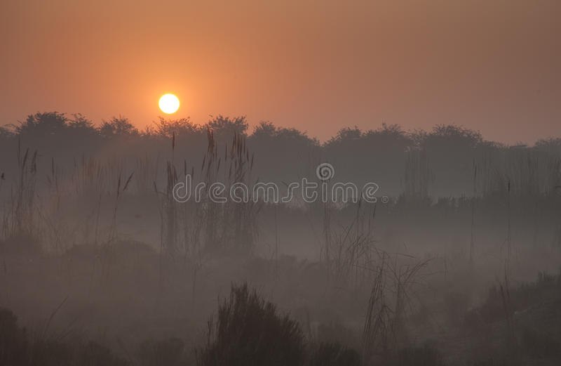 Lever de soleil brumeux images stock