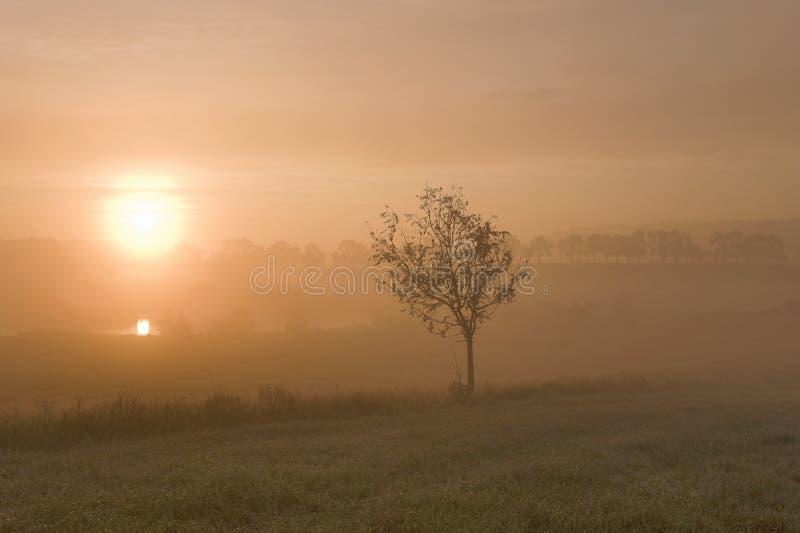 Lever de soleil brumeux de matin photo libre de droits