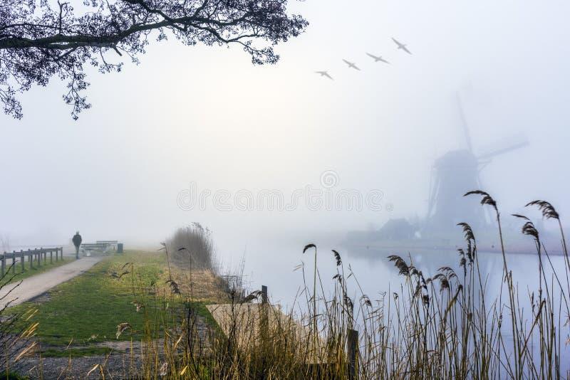 Lever de soleil brumeux et calme de moulin à vent photo libre de droits