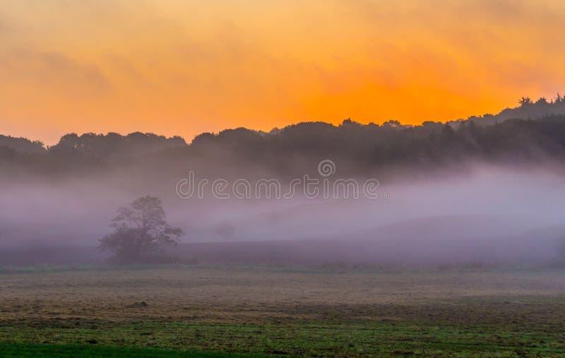 Lever de soleil brumeux mystique photos stock